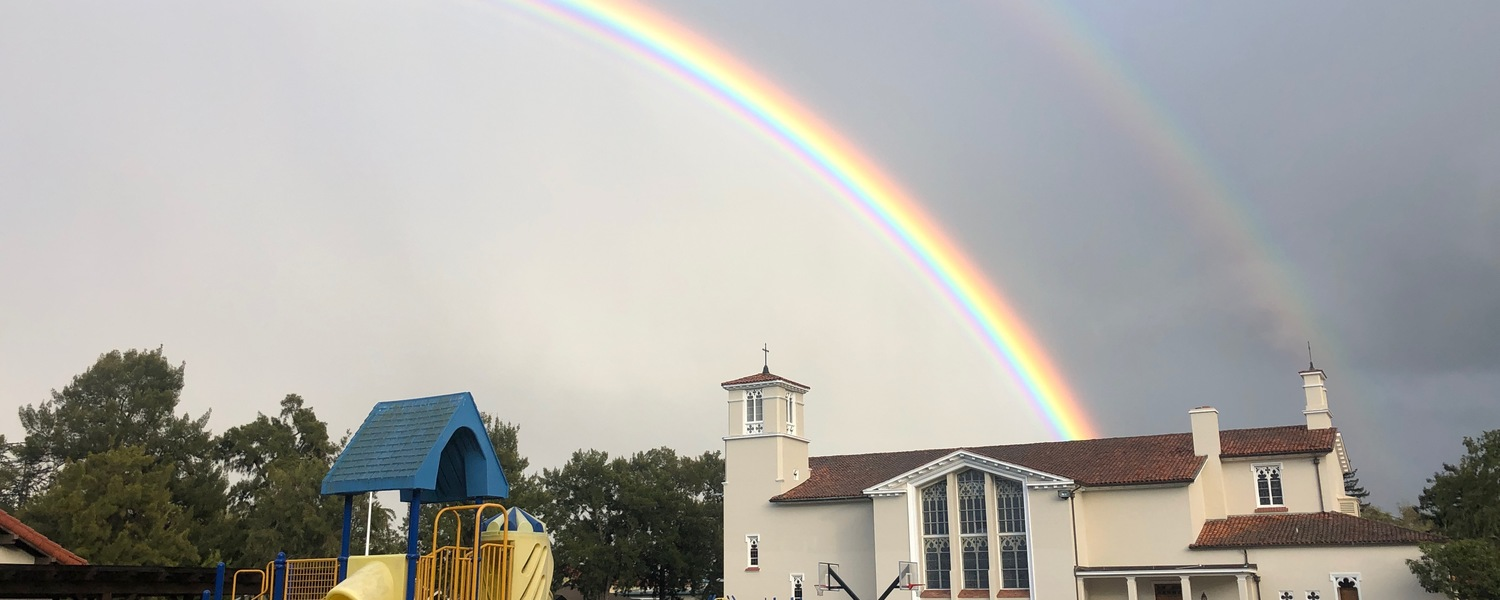 Olmc Rainbow Of Hope